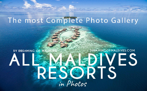 How Many Resorts are in The Maldives ?