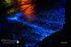 Jouer et s'émerveilleravec du plancton fluorescent