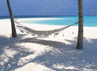 Hammac sur une plage des Maldives