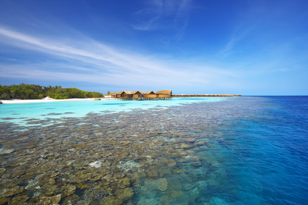 Snorkeling aux Maldives en images: le récif de Lily Beach Resort and Spa