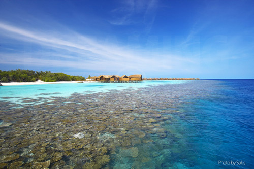 House Reef de Lily Beach Resort and Spa Maldives