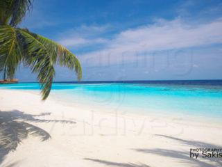 promos maldives