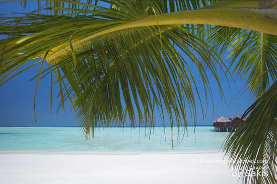 Anantara Dhigu Maldives, les Water Villas vues depuis la plage