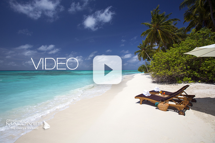 Dernière Vidéo des Maldives
