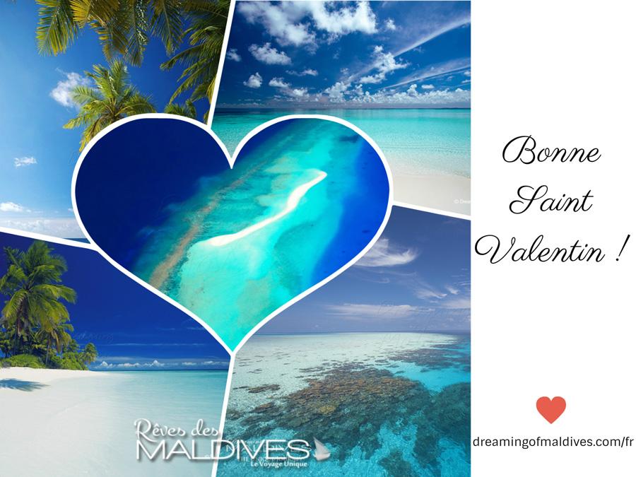 Bonne Saint Valentin ! Vive l'Amour !
