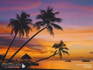 Galerie de photos de Coucher de Soleil aux Maldives