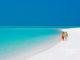 Couple sur une plage des Maldives | Lune de Miel