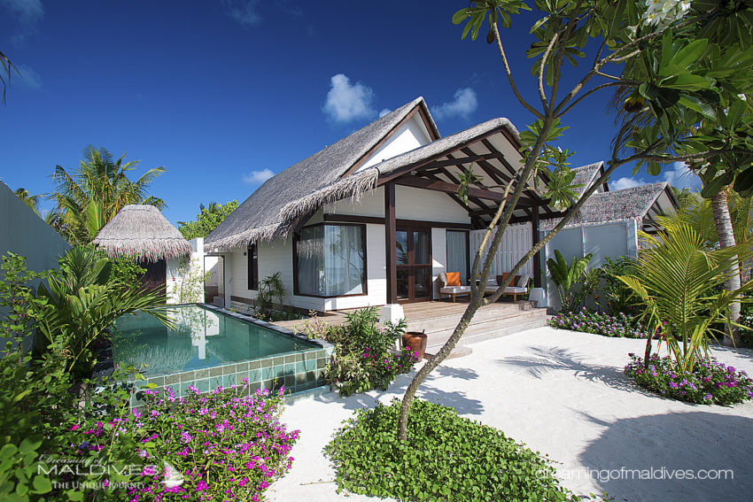 Earth Villa Avec Piscine OZEN at Maadhoo