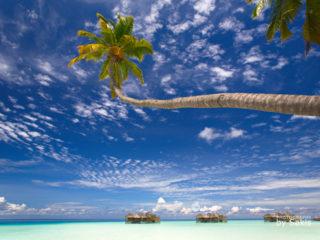 Gili Lankanfushi Maldives - Hôtel de Rêve des Maldives