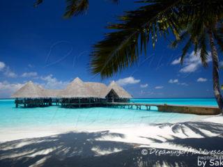 Gili Lankanfushi Maldives Galerie de Photos
