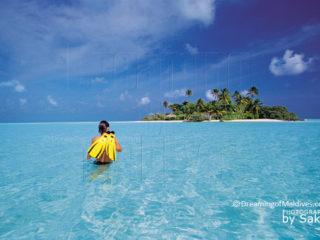 Où faire de la plongée libre aux Maldives ? Petit Guide pour bien choisir son Hôtel