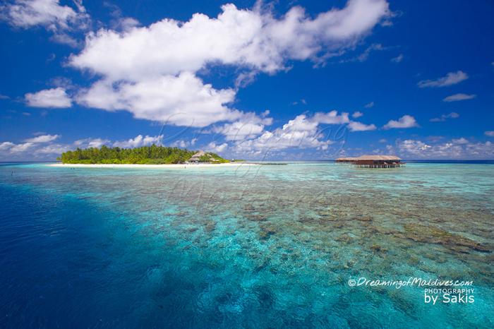 Les récifs qui bordent Filitheyo sont vraiment magnifiques