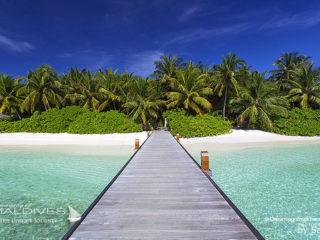 Baros Maldives Jette arrivee
