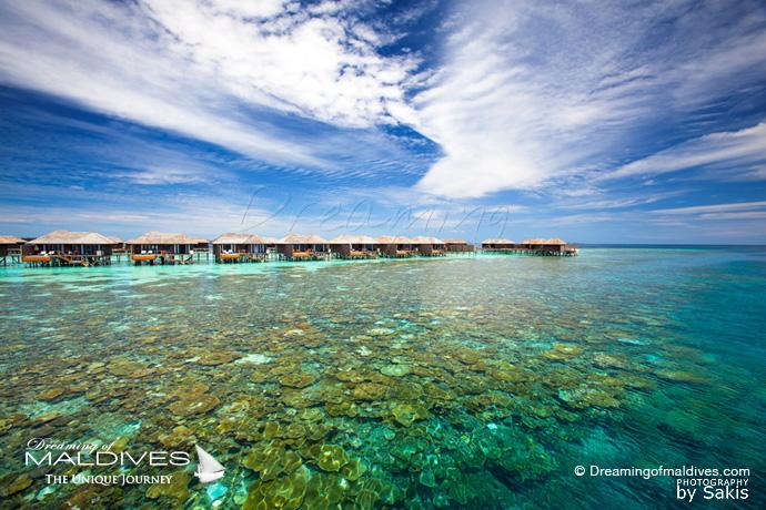 Lily Beach Maldives meilleur Hotel pour le Snorkeling .Récifs de corail de l'ile