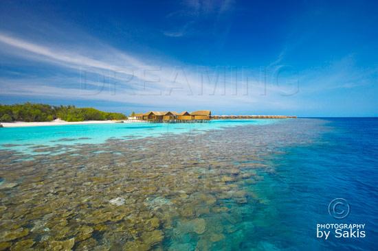 Lily Beach Maldives - Les magnifiques récifs de corail bordant l'ile