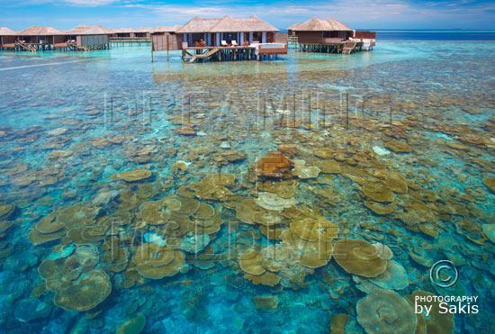 Lily Beach Maldives - Vue sur les Water Villas depuis les récifs de l'ile