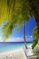 Photo hamac Maldives