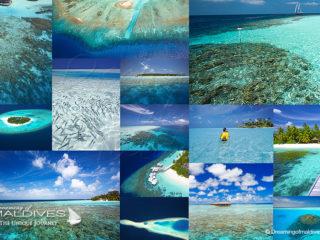 Les Plus Belles Iles Hôtels des Maldives pour faire du snorkeling