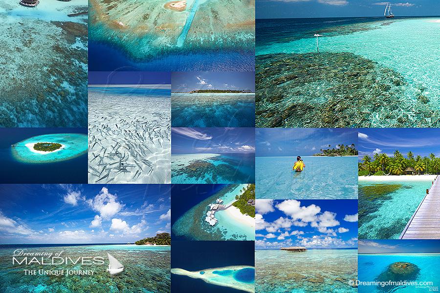 Quel Hôtel choisir aux Maldives pour faire du Snorkeling ? Notre Sélection des Meilleures Iles et Découverte