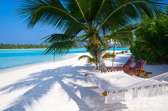 Galerie de Photos Naladhu Maldives - Espace de relaxation sur la plage