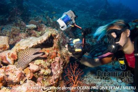 Plonger depuis Meeru dans la partie Nord de l'Atoll Nord de Male Maldives
