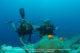 La Plongée dans l'Atoll de Laamu au Six Senses Laamu