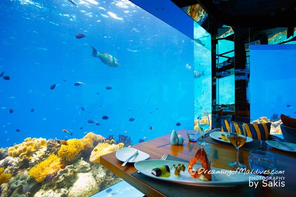 Les grandes vitres du restaurant sous marin d'Anantara Kihavah Maldives avec vue sur les poissons