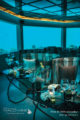 M6m restaurant sous-marin hôtel maldives OZEN Maadhoo