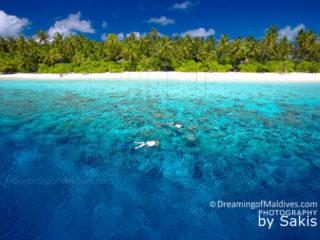 Plongee et snorkeling a filitheyo maldives