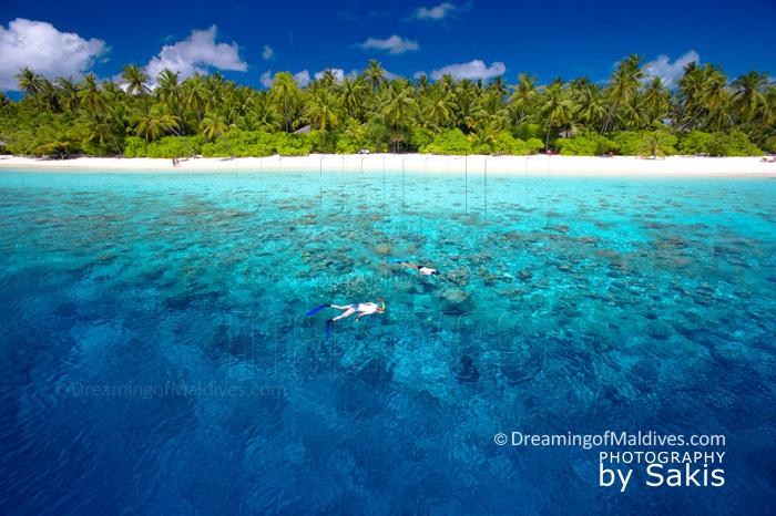 Tout savoir sur la Plongée et le Snorkeling à Filitheyo avec l'interview des responsables de la base de plongée de l'île.