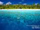 Snorkeling aux Maldives