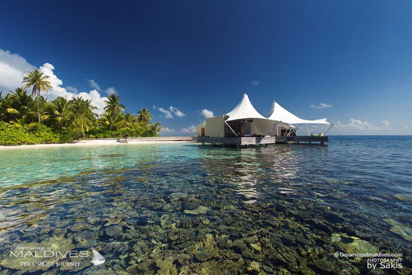 TOP 5 des Choses à faire à Hôtel W Maldives Faire du Snorkeling autour de l'ile