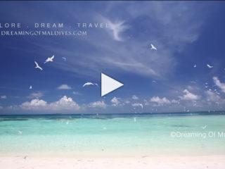 Les Maldives en Slow Motion Vidéo