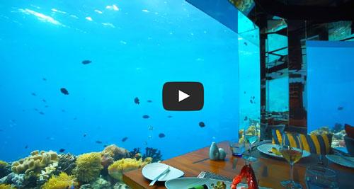 Restaurant sous marin at Anantara Kihavah Maldives in Video