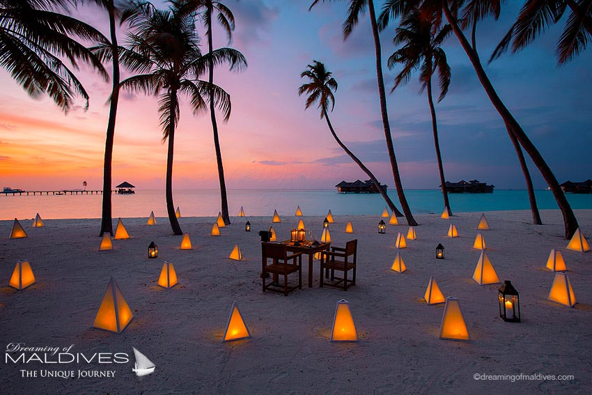 Gili Lankanfushi Maldives Dining Options