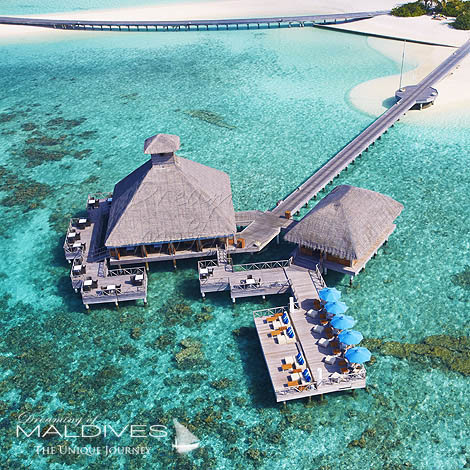 Huvafen Fushi Maldives best Moment and Place Dine at Raw Restaurant