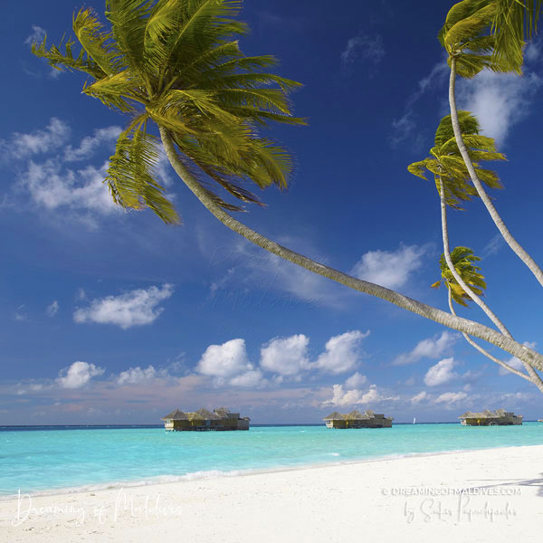 All Resorts in Maldives Photo Gallery