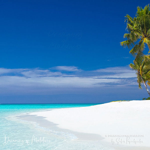 Visit Maldives Islands
