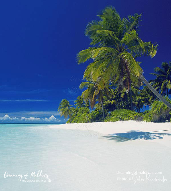 Discover the Maldives Islands