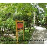 The Nature trail at Kuramathi