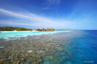 Snorkeling in Maldives, at Lily Beach Resort and Spa
