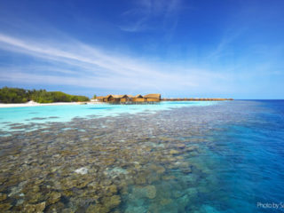 Lily Beach Resort and Spa close House Reef