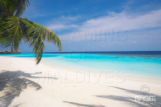 Discover Lily Beach Resort & Spa Maldives in 3...