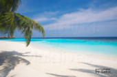 Photo of The day : Lily Beach Resort and Spa, Maldives