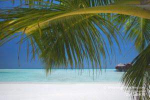 Anantara Dhigu Resort & Spa – New Maldives Dreamy Resort of The Month !