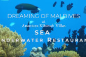 Anantara Kihavah Villas Maldives SEA Underwater Restaurant VIDEO