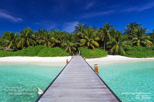 Walk down the Jetty at Baros Maldives. Maldives Photo Of The Day