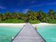 Walk down the Jetty at Baros Maldives. Maldives Photo Of The Day