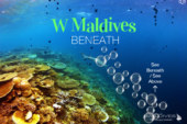 Dive Under & See Beneath W Maldives