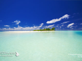 what 3 items do you bring on a desert island in maldives
